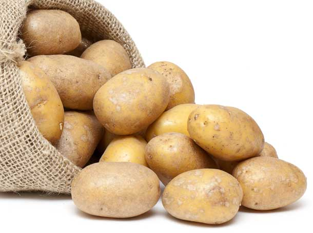 iowa russet potatoes