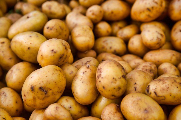 potatoes at the farmer's market